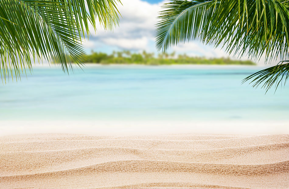 beach with palm trees and island in the background