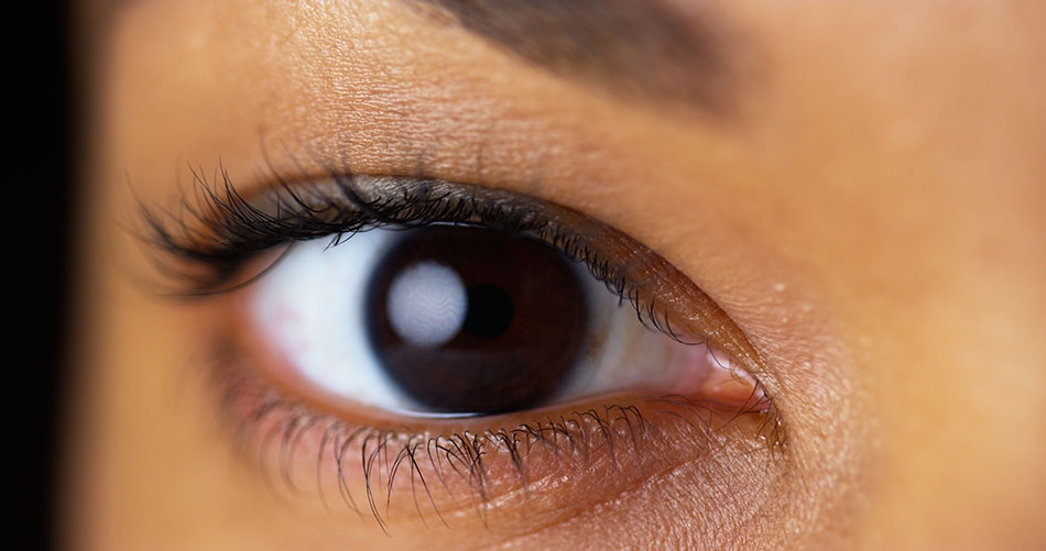 close-up of dark brown eye